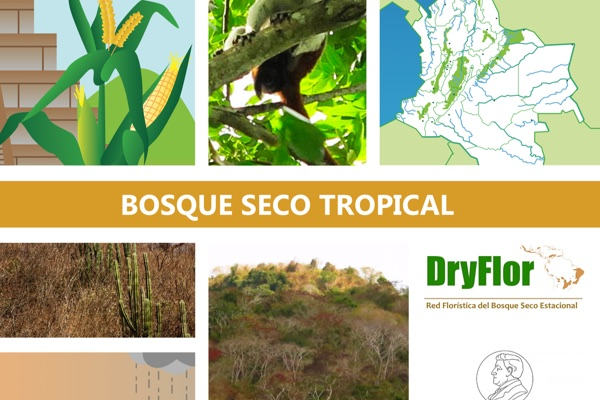 Cartilla del bosque seco tropical