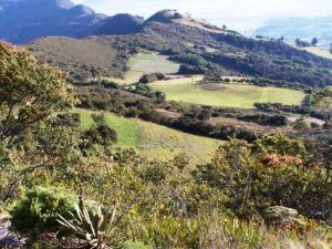 proyecto_biodiversidad_altiplano_cundiboyacense_01
